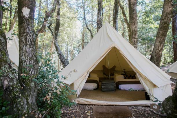 Camping | Sugarloaf Ridge State Park